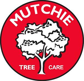 Mutchie Tree Service